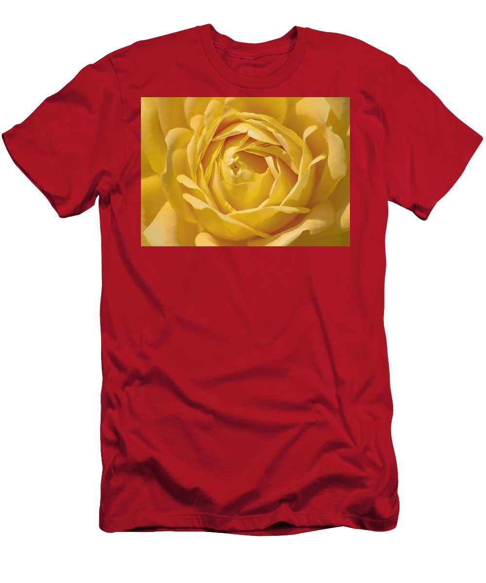 Rose Men's T-Shirt (Athletic Fit) featuring the photograph Golden One by Hal Halli