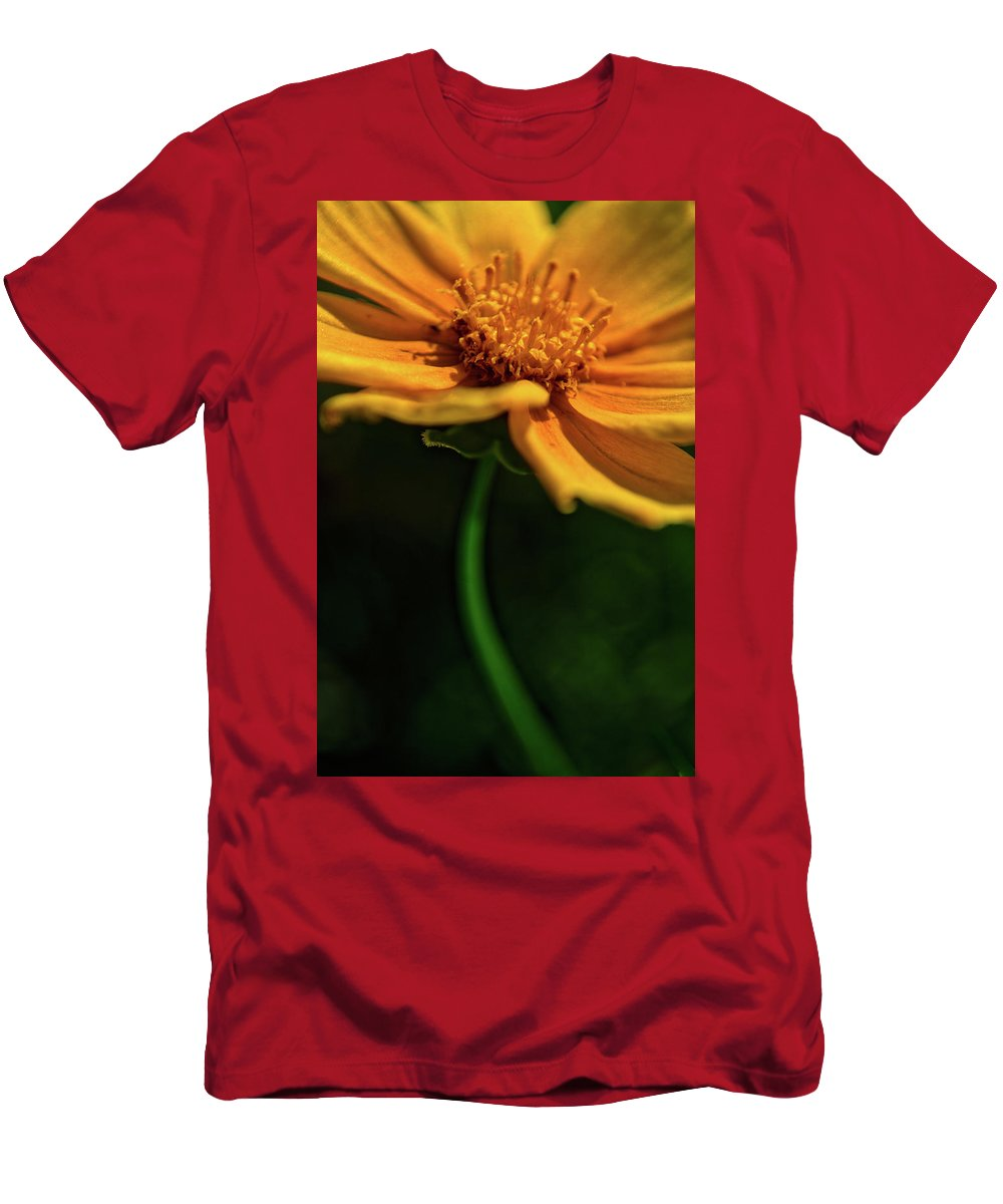 Ohio Men's T-Shirt (Athletic Fit) featuring the photograph Golden by Stewart Helberg