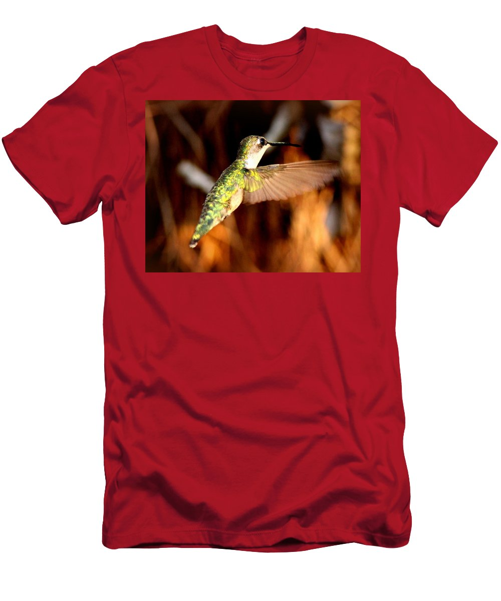 Ruby-throated Hummingbird Men's T-Shirt (Athletic Fit) featuring the photograph Img_4625 - Ruby-throated Hummingbird by Travis Truelove
