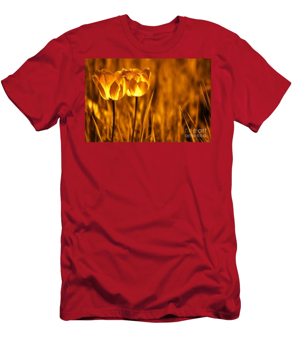 Tulips Men's T-Shirt (Athletic Fit) featuring the photograph In A Perfect World by Jacky Gerritsen