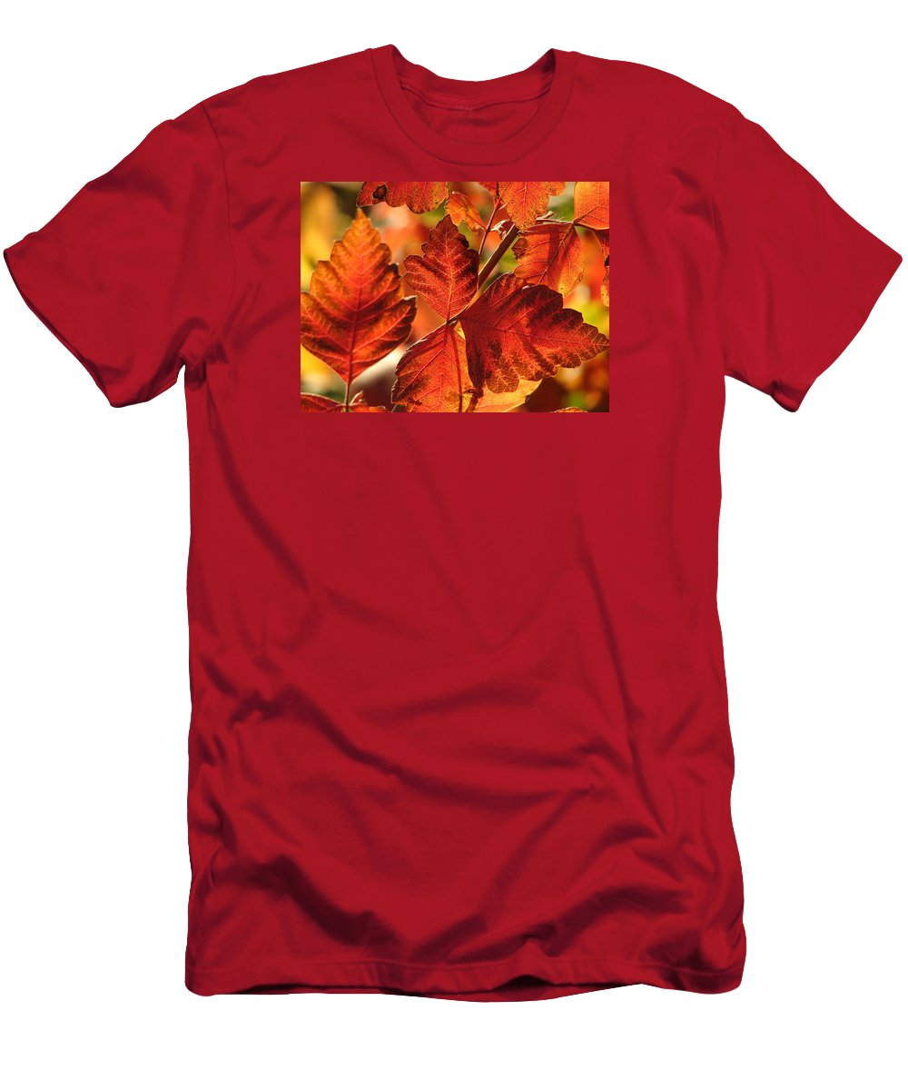 Photograph T-Shirt featuring the photograph Jack Painted My Yard by J R Seymour