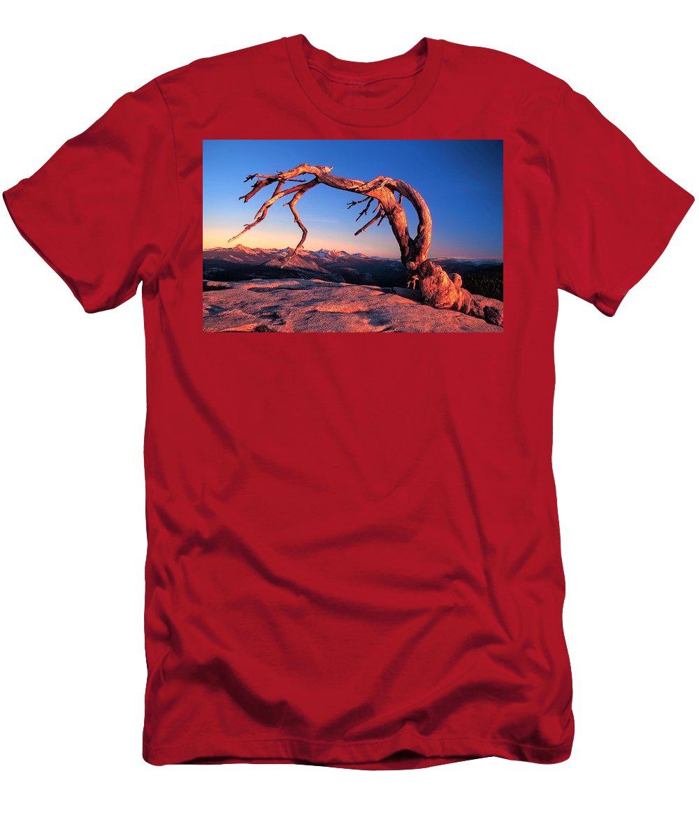 Yosemite Men's T-Shirt (Athletic Fit) featuring the photograph Jeffrey Pine On Sentinal Dome Sunset Yosemite National Park by Dan Blackburn
