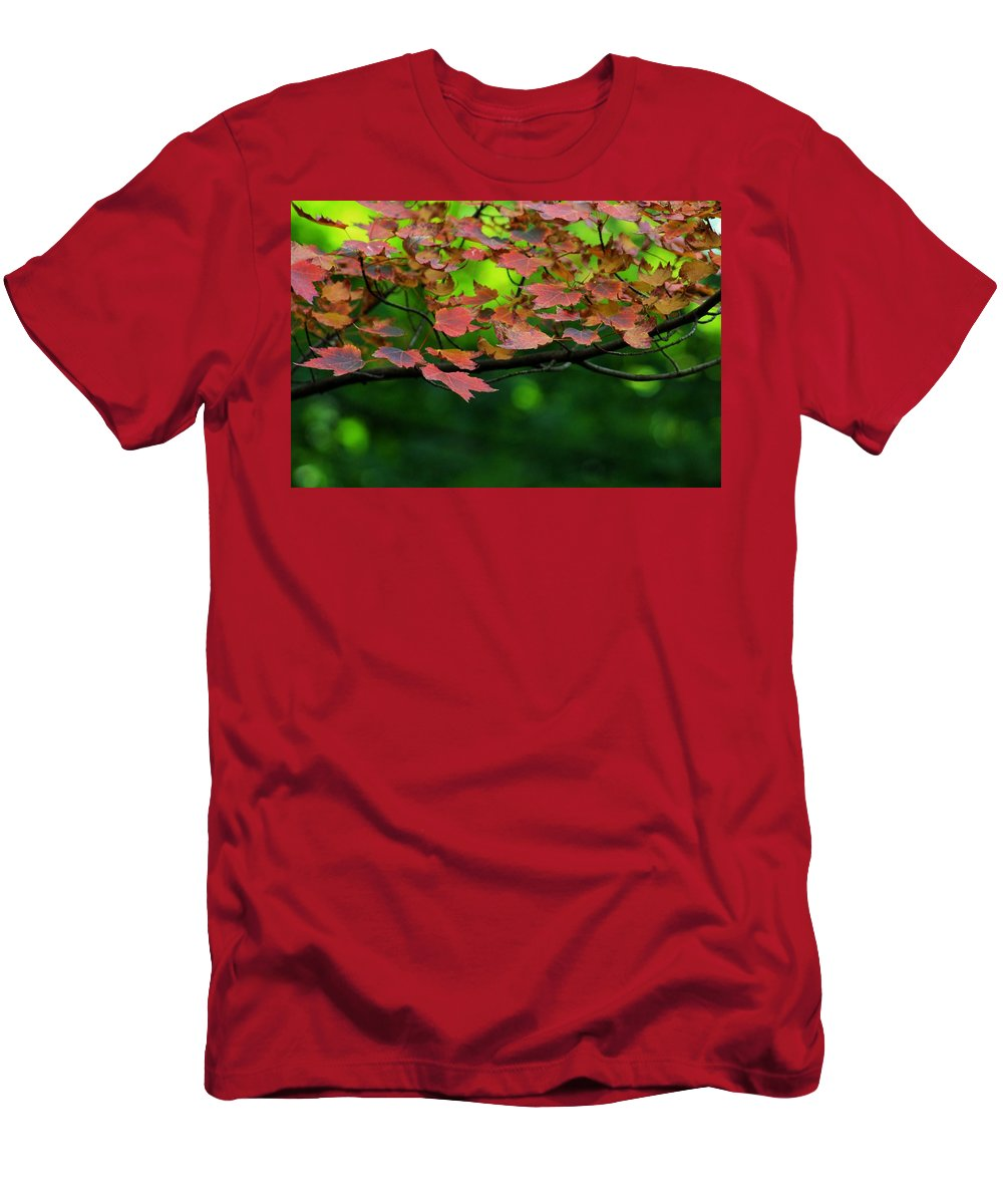 Autumn Men's T-Shirt (Athletic Fit) featuring the photograph Laid Upon The Branches by LKB Art and Photography