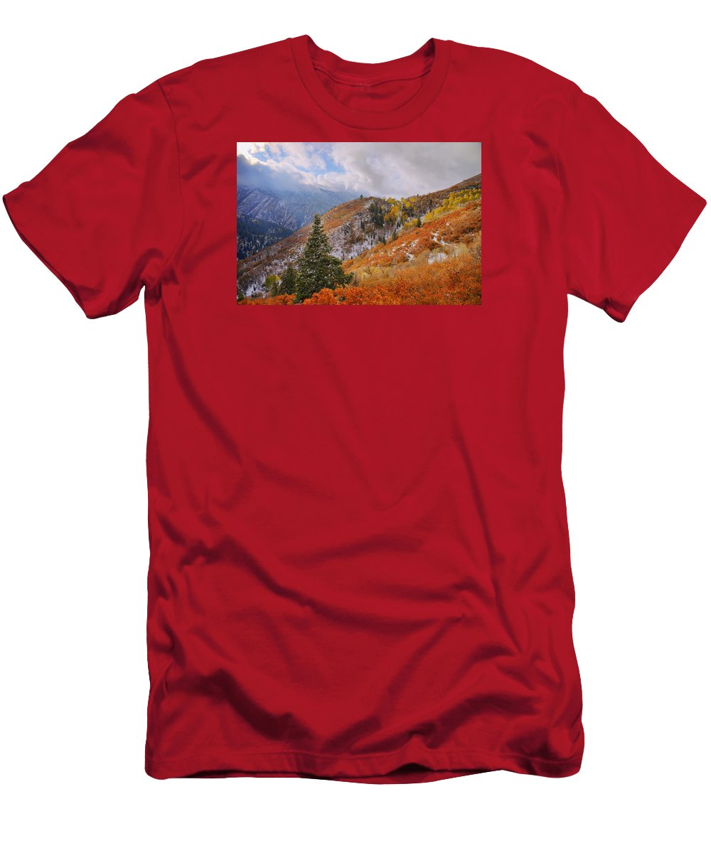 Forest Men's T-Shirt (Athletic Fit) featuring the photograph Last Fall by Chad Dutson