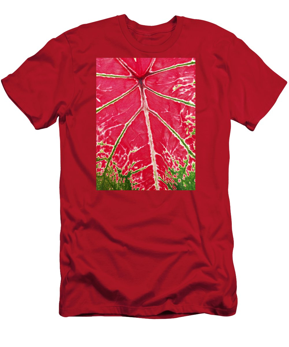 Leaf Men's T-Shirt (Athletic Fit) featuring the photograph Leaf Veins by Bruce Roker