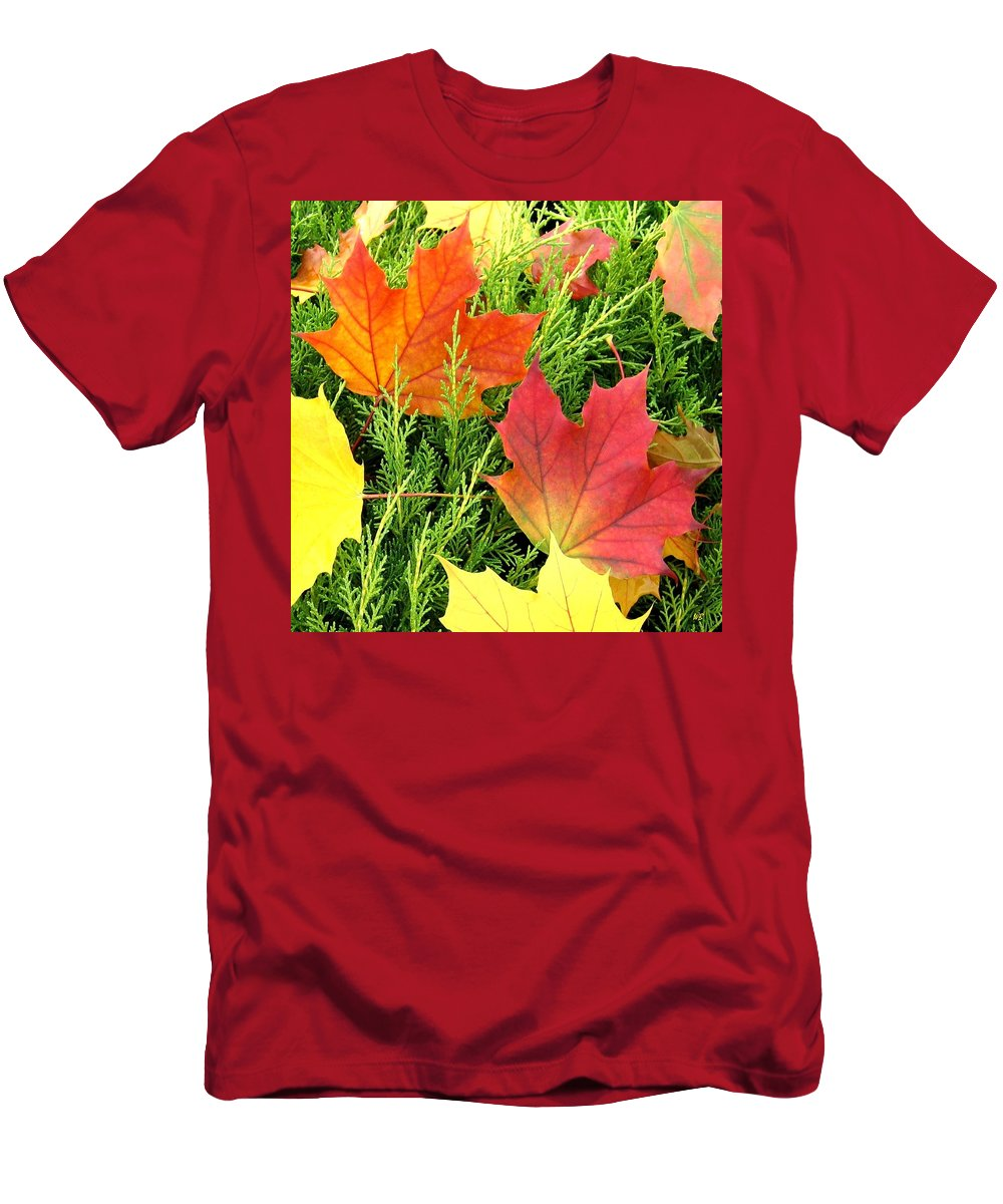 Autumn Men's T-Shirt (Athletic Fit) featuring the photograph Maple Mania 5 by Will Borden