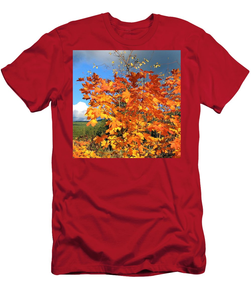 Autumn Men's T-Shirt (Athletic Fit) featuring the photograph Maple Mania 8 by Will Borden