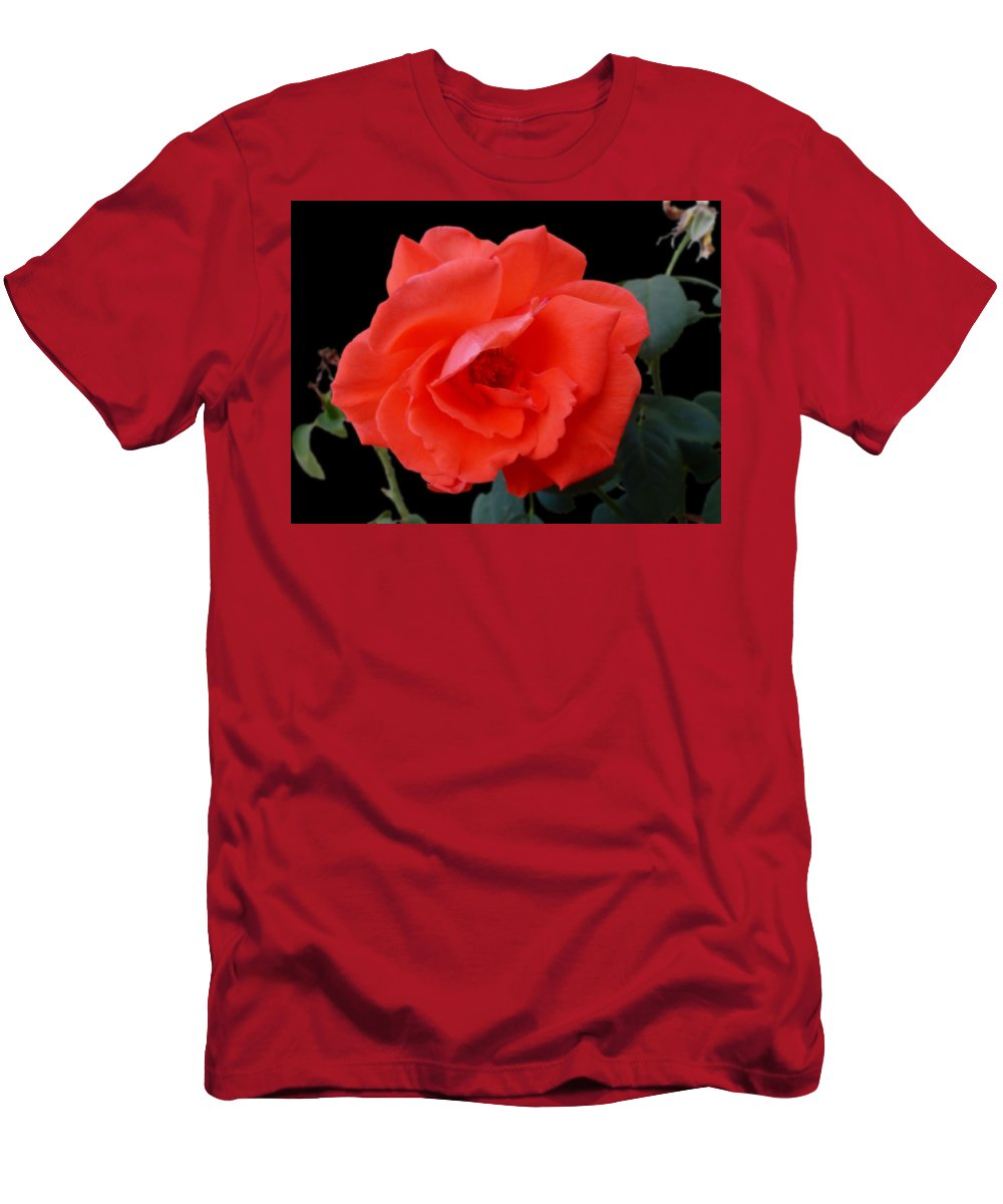 Rose Men's T-Shirt (Athletic Fit) featuring the photograph New Bloom by Mark Blauhoefer