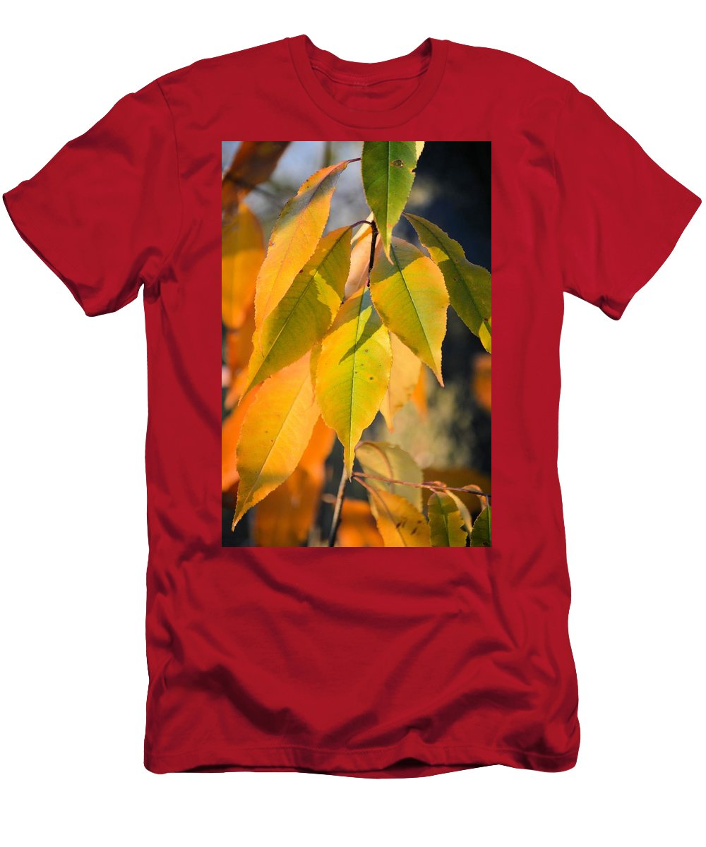 Colors Men's T-Shirt (Athletic Fit) featuring the photograph November Colors by Bonfire Photography