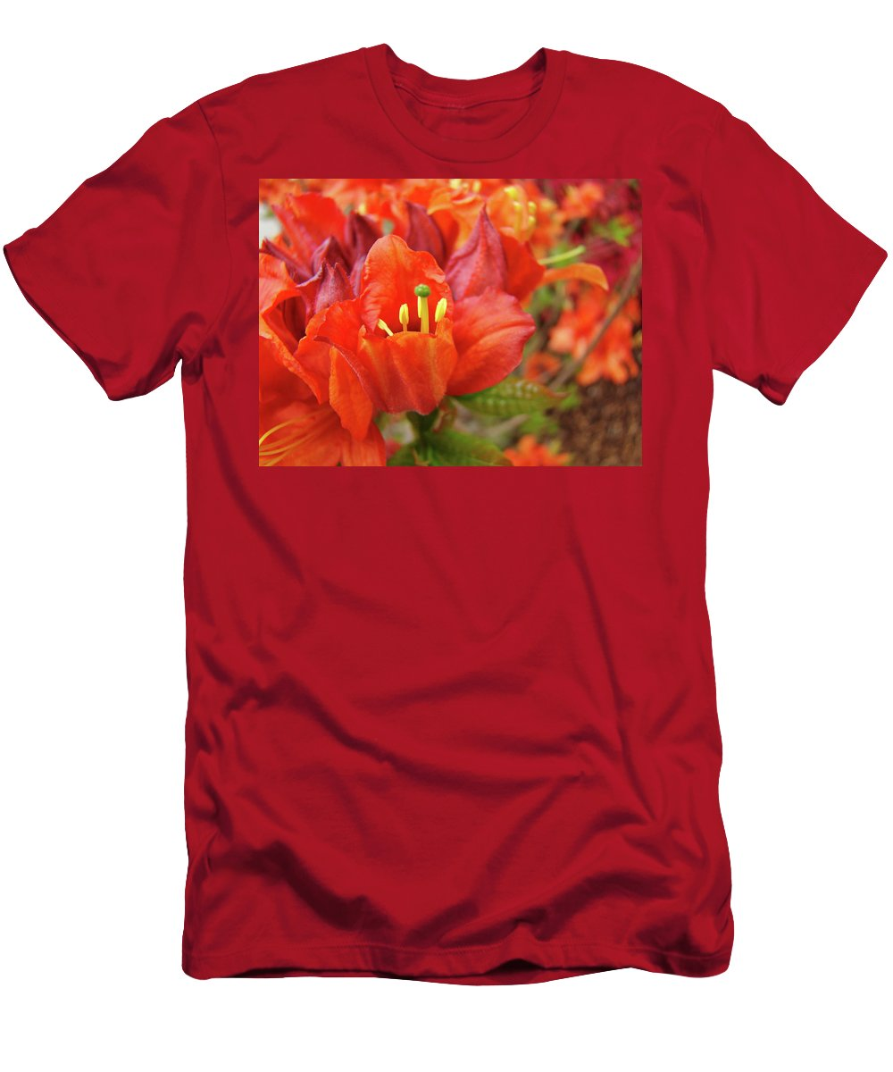 Orange Men's T-Shirt (Athletic Fit) featuring the photograph Office Art Prints Orange Azalea Flowers 20 Giclee Prints Baslee Troutman by Baslee Troutman