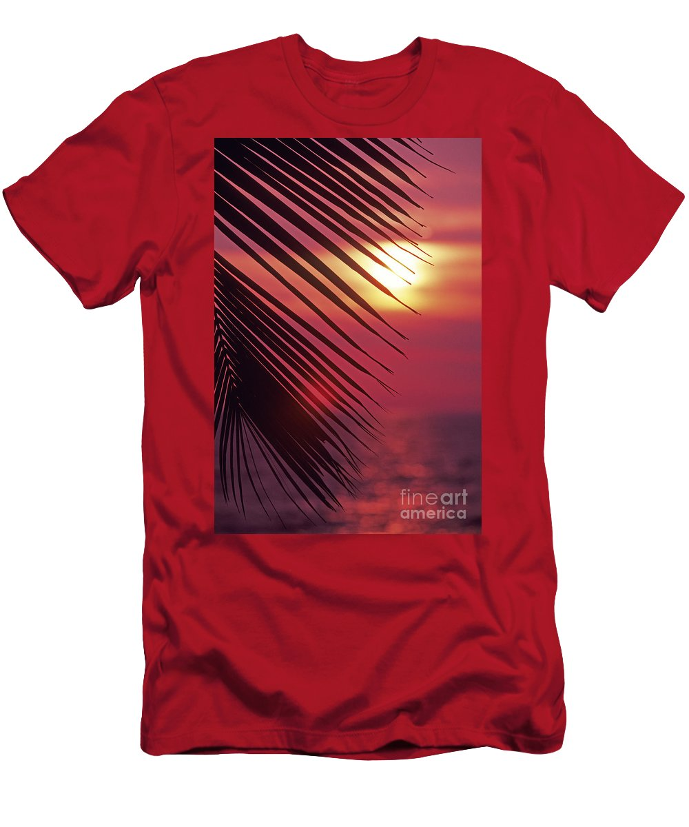 Beautiful Men's T-Shirt (Athletic Fit) featuring the photograph Palm At Sunset by Carl Shaneff - Printscapes