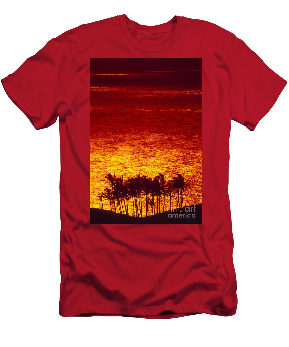 Bright Men's T-Shirt (Athletic Fit) featuring the photograph Palms And Reflections by Ron Dahlquist - Printscapes