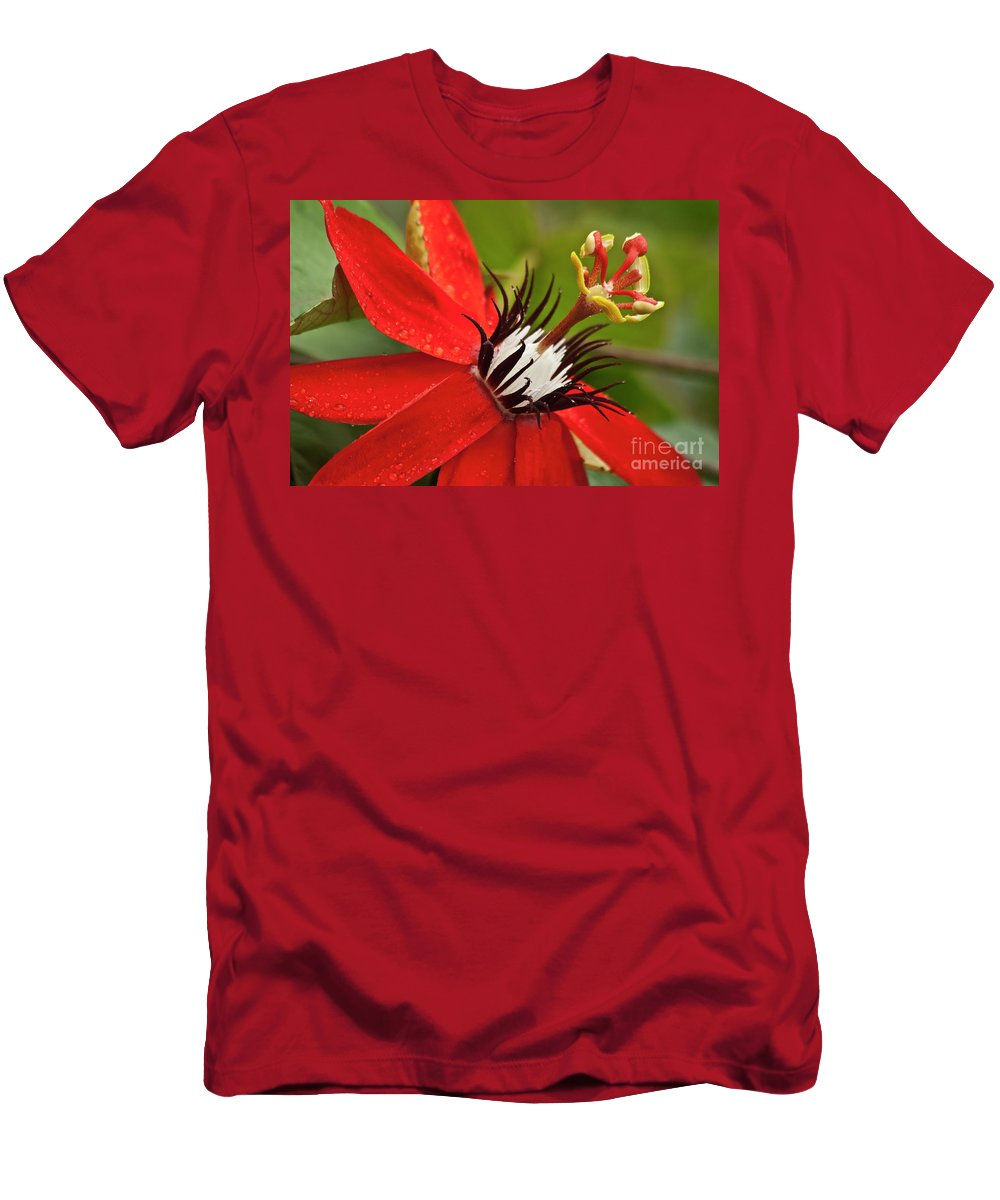 Nature Men's T-Shirt (Athletic Fit) featuring the photograph Passionate Flower by Heiko Koehrer-Wagner
