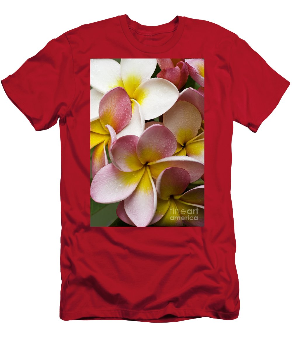 Pink Frangipani Men's T-Shirt (Athletic Fit) featuring the photograph Pink Frangipani by Sheila Smart Fine Art Photography