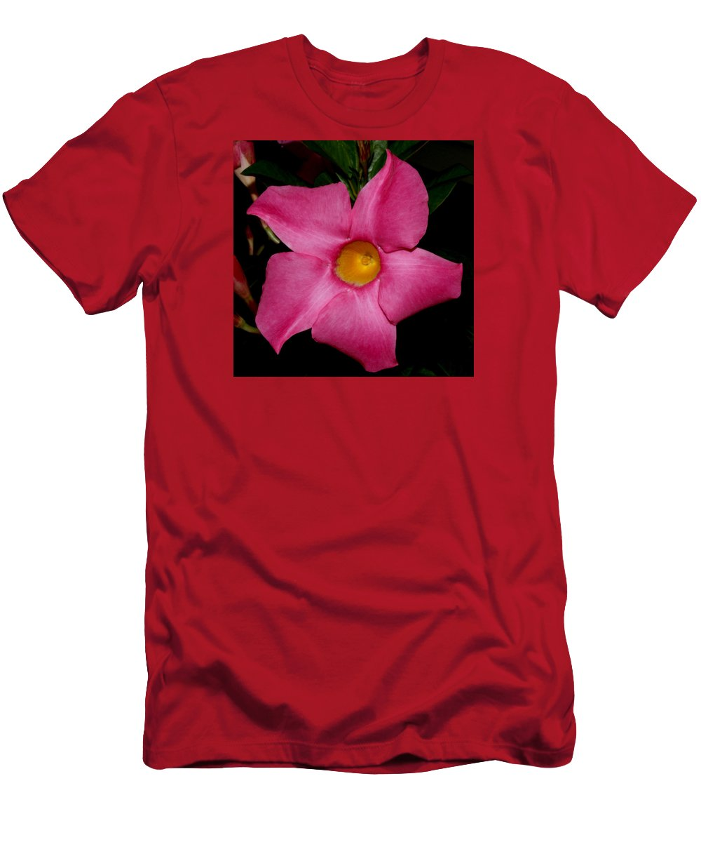 Nature Men's T-Shirt (Athletic Fit) featuring the photograph Pink Mandevilla by Robert Morin