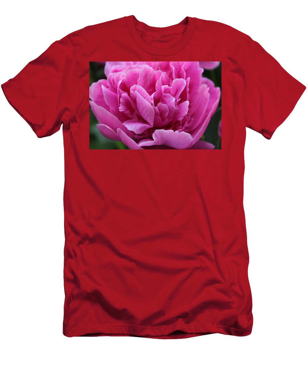 Pink Men's T-Shirt (Athletic Fit) featuring the photograph Pink Peony by Carolyn Jacob