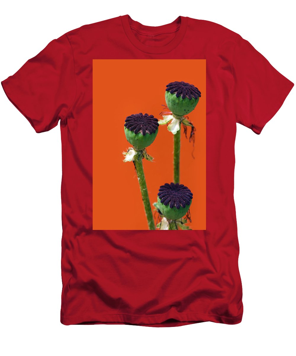 Interior Design Men's T-Shirt (Athletic Fit) featuring the photograph Poppies On Orange by Lisa Knechtel