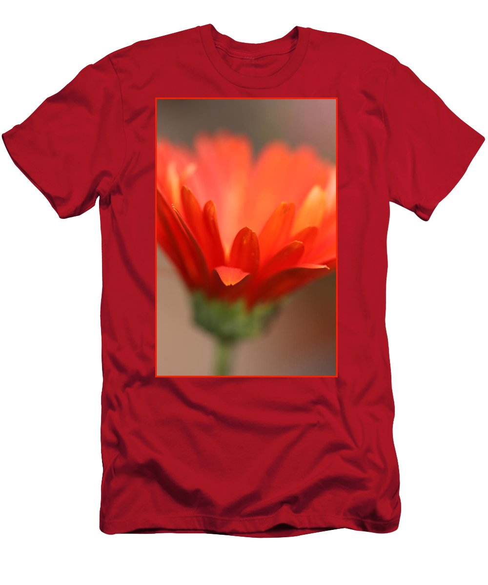 Daisy Plant Flower Orange Green Growing Photography Photograph Art Digital Men's T-Shirt (Athletic Fit) featuring the photograph Reaching Out by Shari Jardina