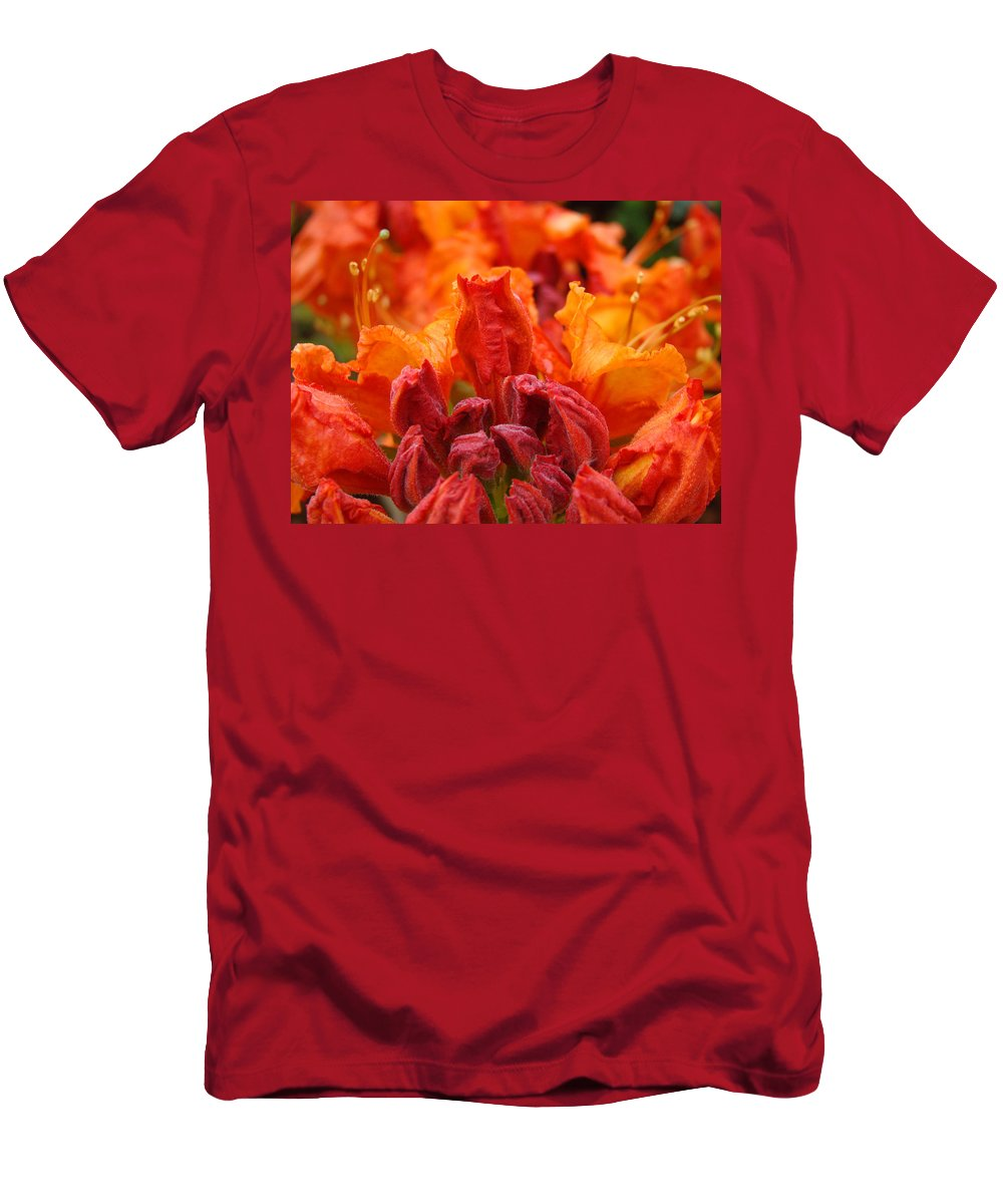�azaleas Artwork� Men's T-Shirt (Athletic Fit) featuring the photograph Red Azaleas Orange Azalea Flowers 9 Floral Giclee Art Prints Baslee Troutman by Baslee Troutman