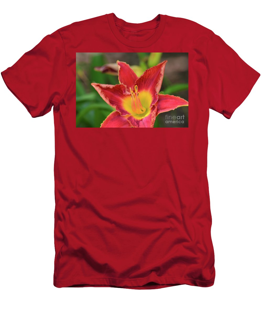 Red Daylily Men's T-Shirt (Athletic Fit) featuring the photograph Red Daylily by Ruth Housley