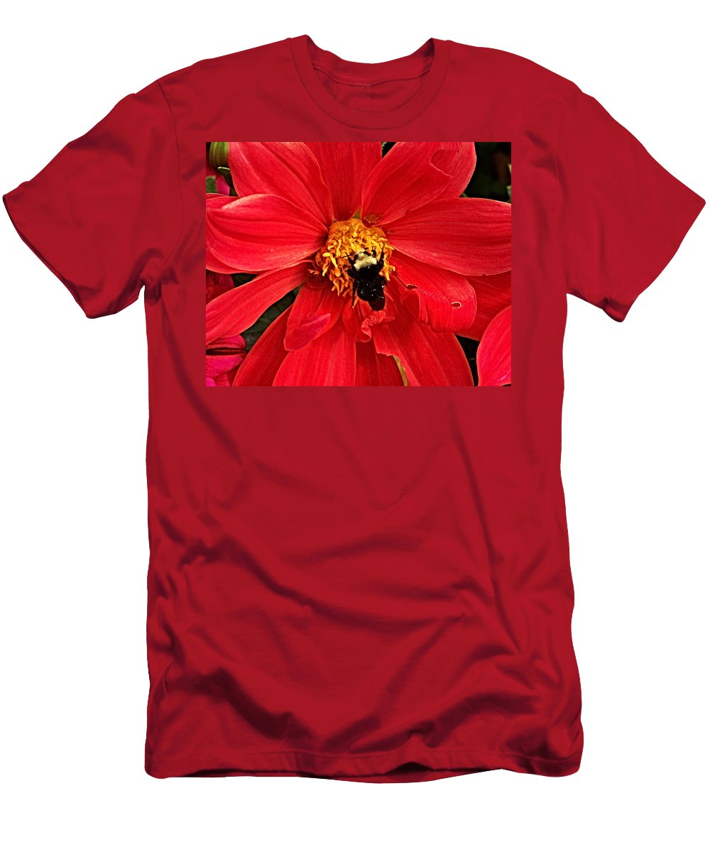 Flower Men's T-Shirt (Athletic Fit) featuring the photograph Red Flower And Bee by Anthony Jones