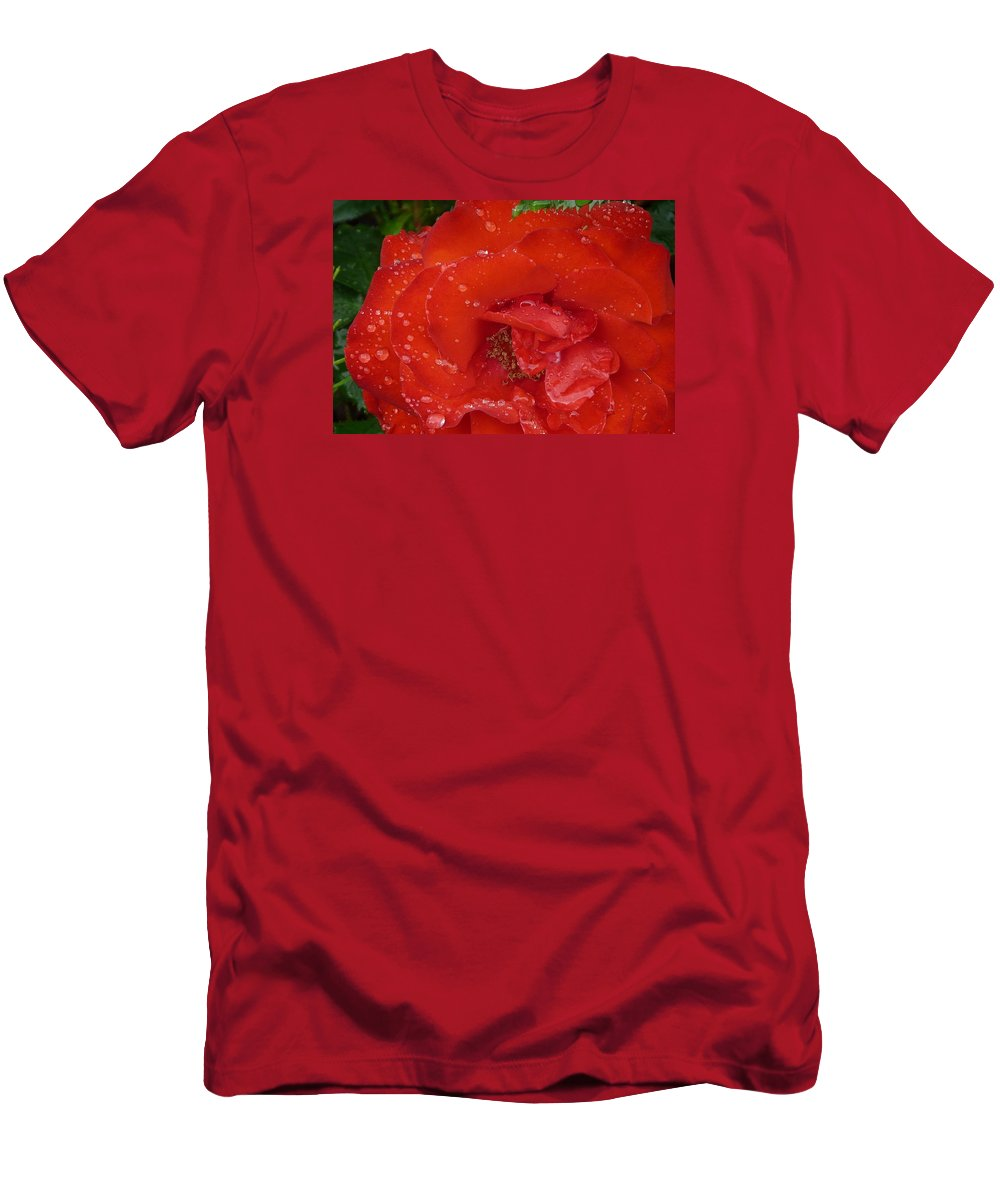 Rose Men's T-Shirt (Athletic Fit) featuring the photograph Red Rose After Rain by Valerie Ornstein