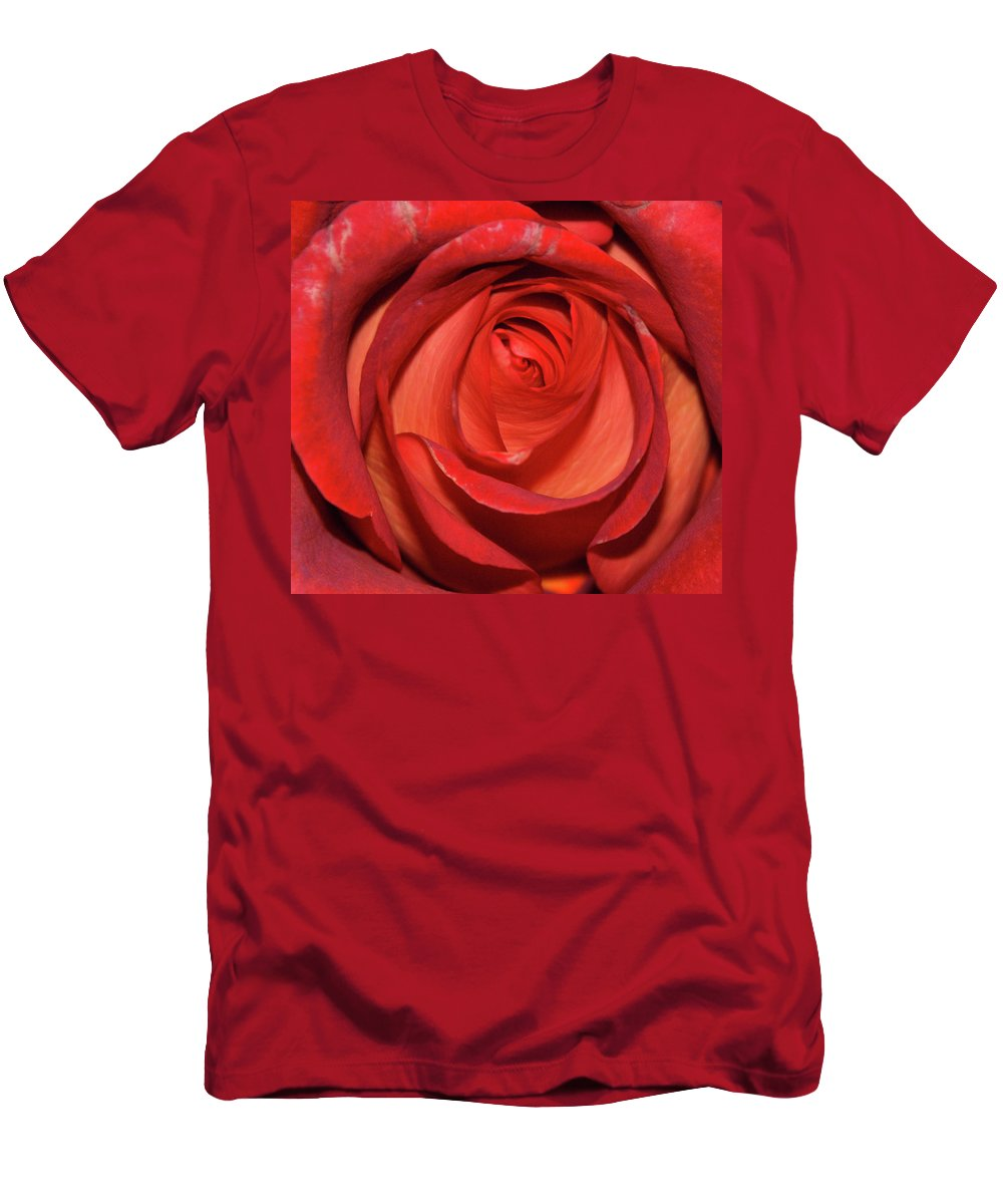 Macro Men's T-Shirt (Athletic Fit) featuring the photograph Red Rose Up Close by Richard Bryce and Family