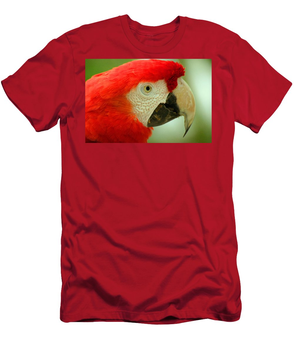 Parrot Men's T-Shirt (Athletic Fit) featuring the photograph Scarlett Macaw South America by Ralph A Ledergerber-Photography