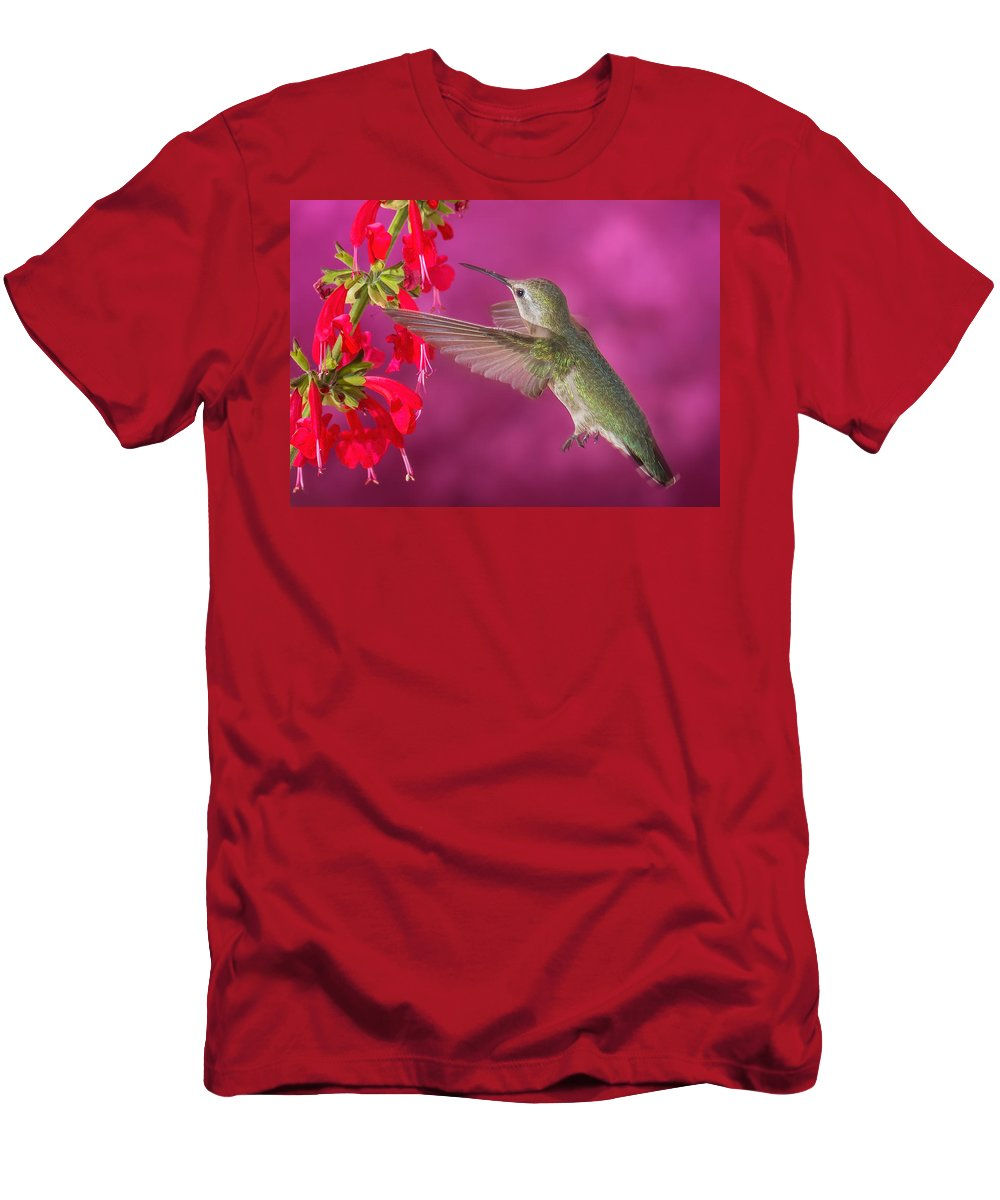 Arizona Men's T-Shirt (Athletic Fit) featuring the photograph Sipping At The Salvia by James Capo