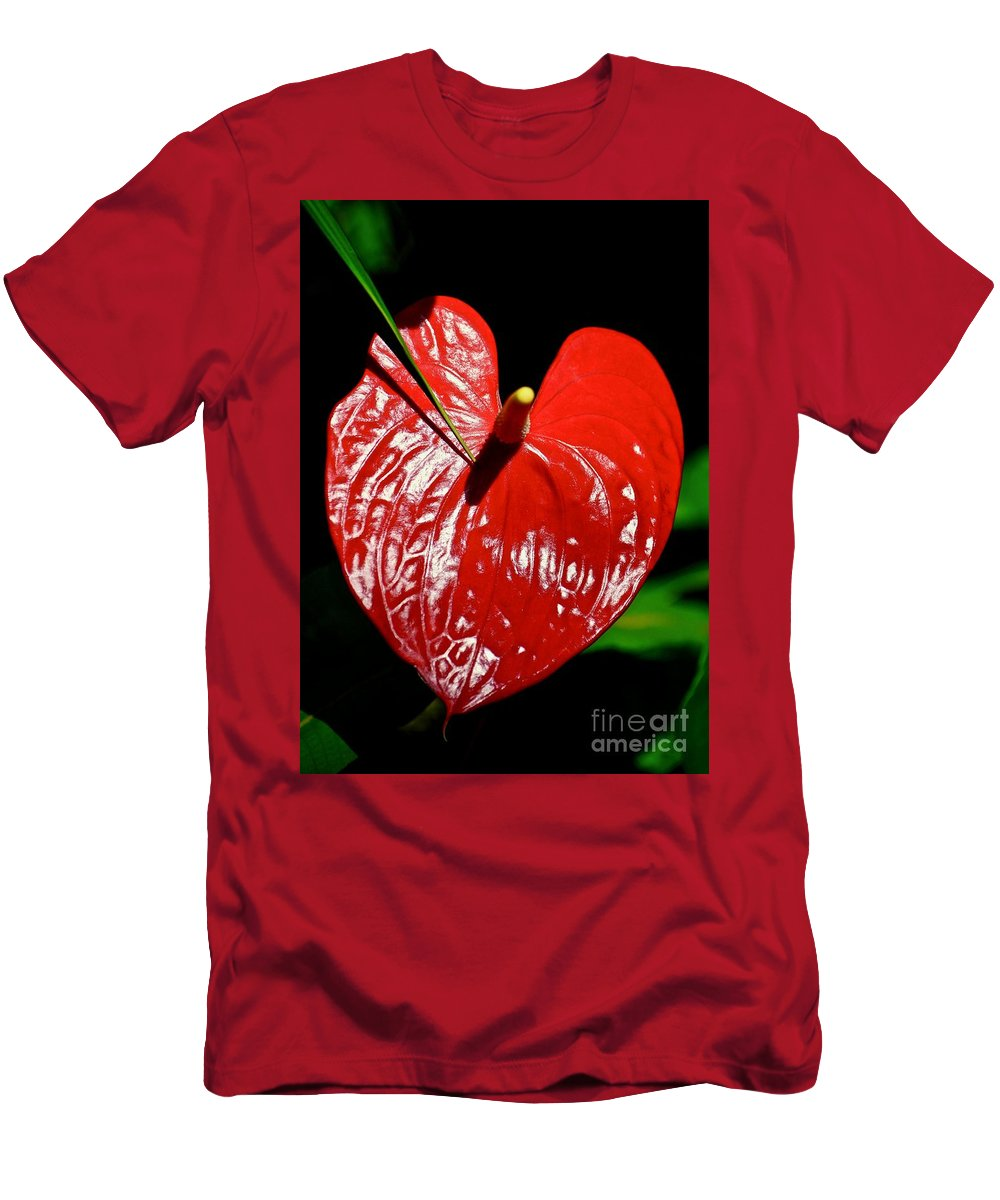 Selby Gardens Men's T-Shirt (Athletic Fit) featuring the photograph A Point To Your Heart by Andrea Spritzer
