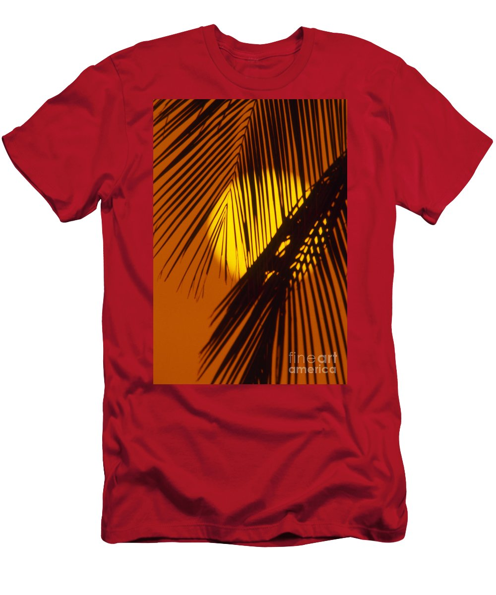 Bright Men's T-Shirt (Athletic Fit) featuring the photograph Sun Shining Through Palms by Ron Dahlquist - Printscapes