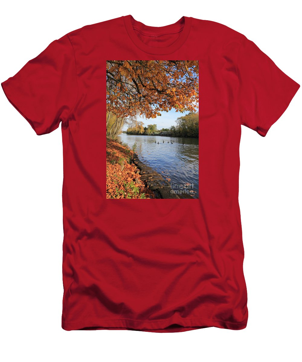 Sunbury On Thames Surrey Uk Autumn Leaves Tree Trees Men's T-Shirt (Athletic Fit) featuring the photograph Sunbury On Thames Surrey Uk by Julia Gavin
