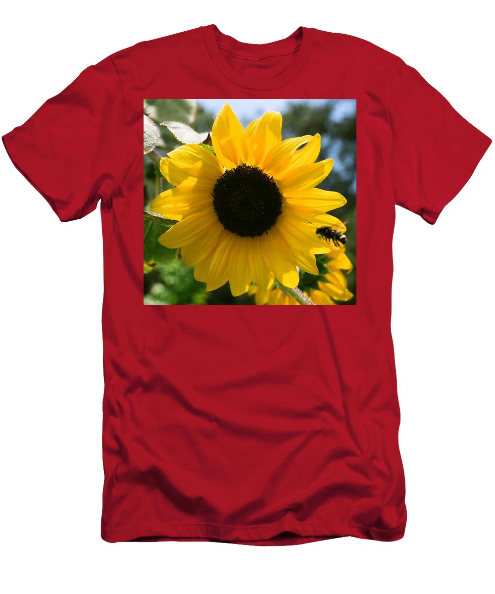 Flower Men's T-Shirt (Athletic Fit) featuring the photograph Sunflower With Bee by Dean Triolo
