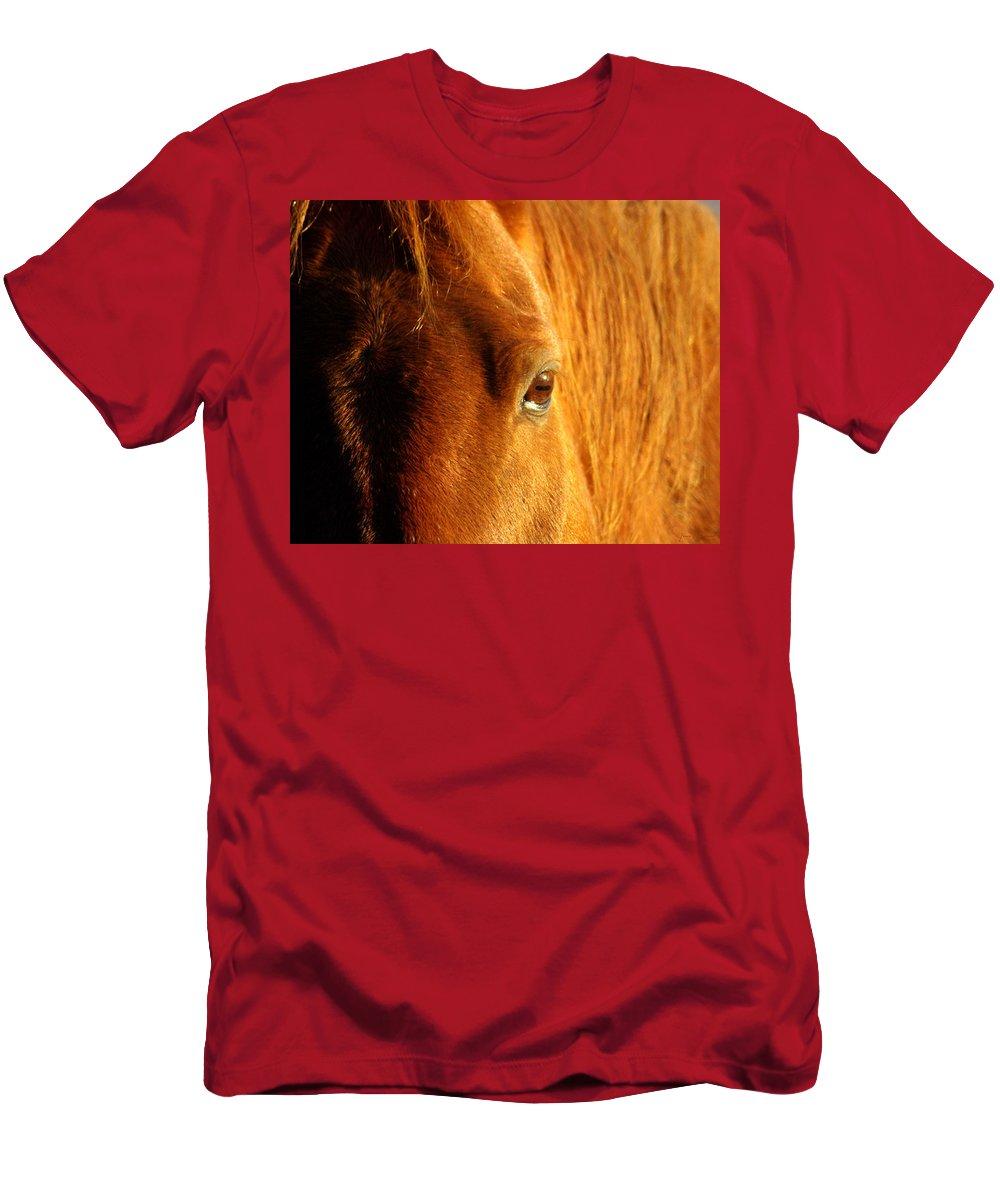 Jenny Gandert Men's T-Shirt (Athletic Fit) featuring the photograph Sunlight Eyes by Jenny Gandert