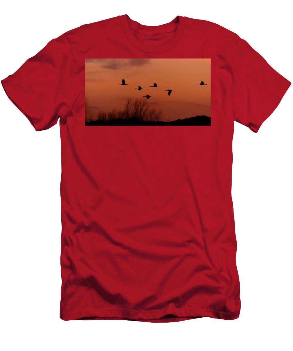 Bosque Men's T-Shirt (Athletic Fit) featuring the photograph Sunset Sandhill Cranes by Gary Langley