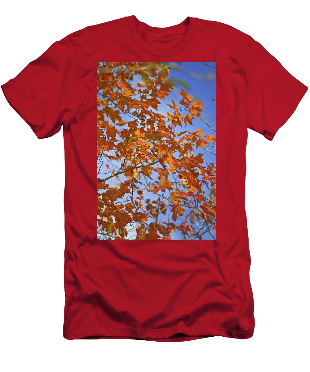 Fall Men's T-Shirt (Athletic Fit) featuring the photograph The Color Of Fall 2 by Teresa Mucha