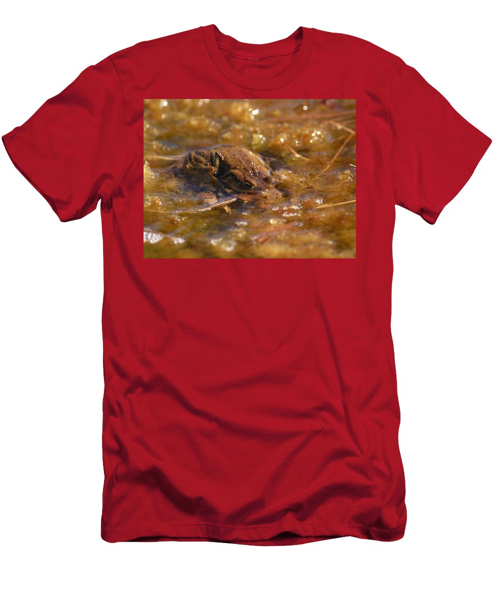 Lehtokukka Men's T-Shirt (Athletic Fit) featuring the photograph The Common Toads 2 by Jouko Lehto