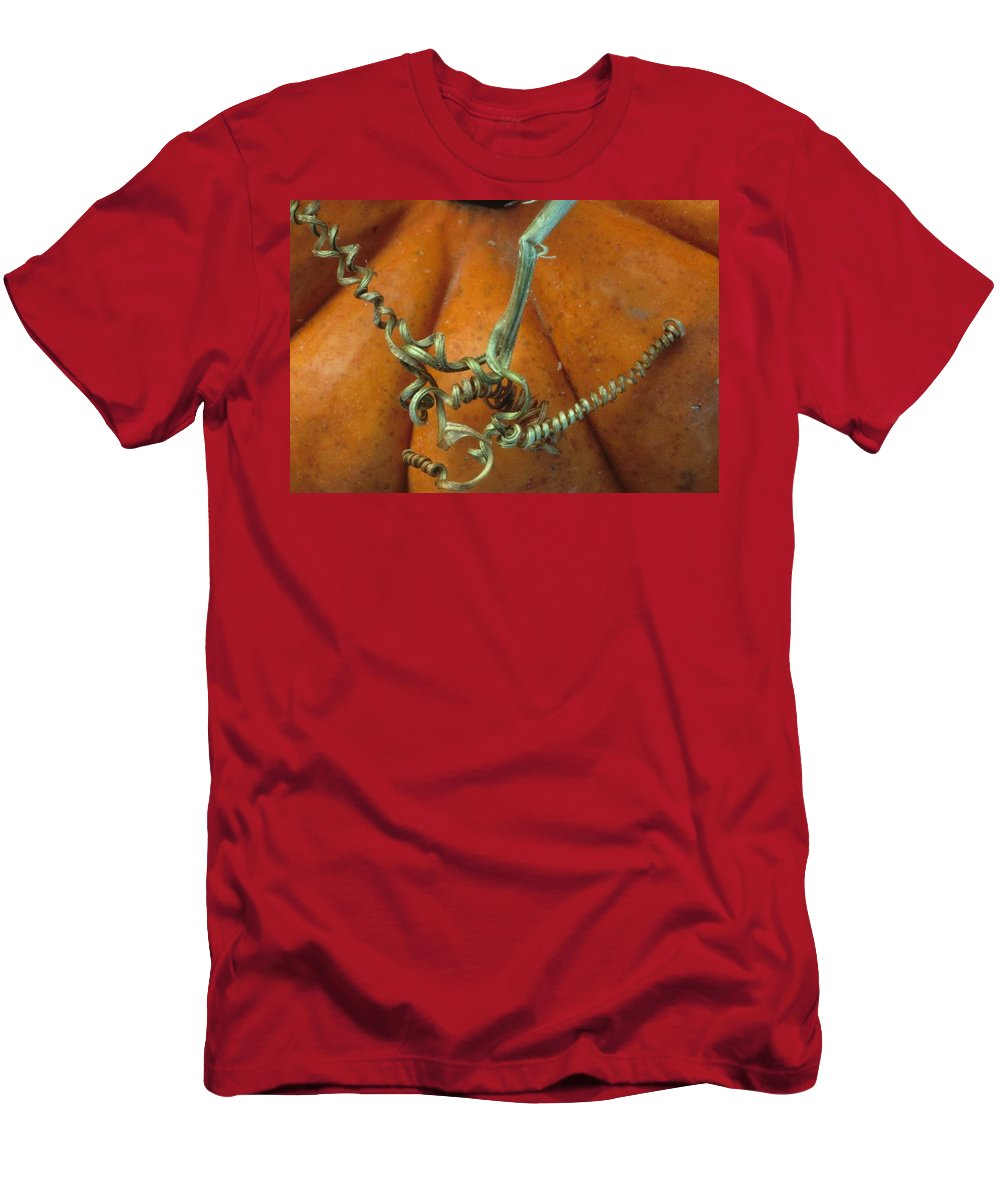 Autumn Men's T-Shirt (Athletic Fit) featuring the photograph Voluptuous Autumn by Laurie Paci
