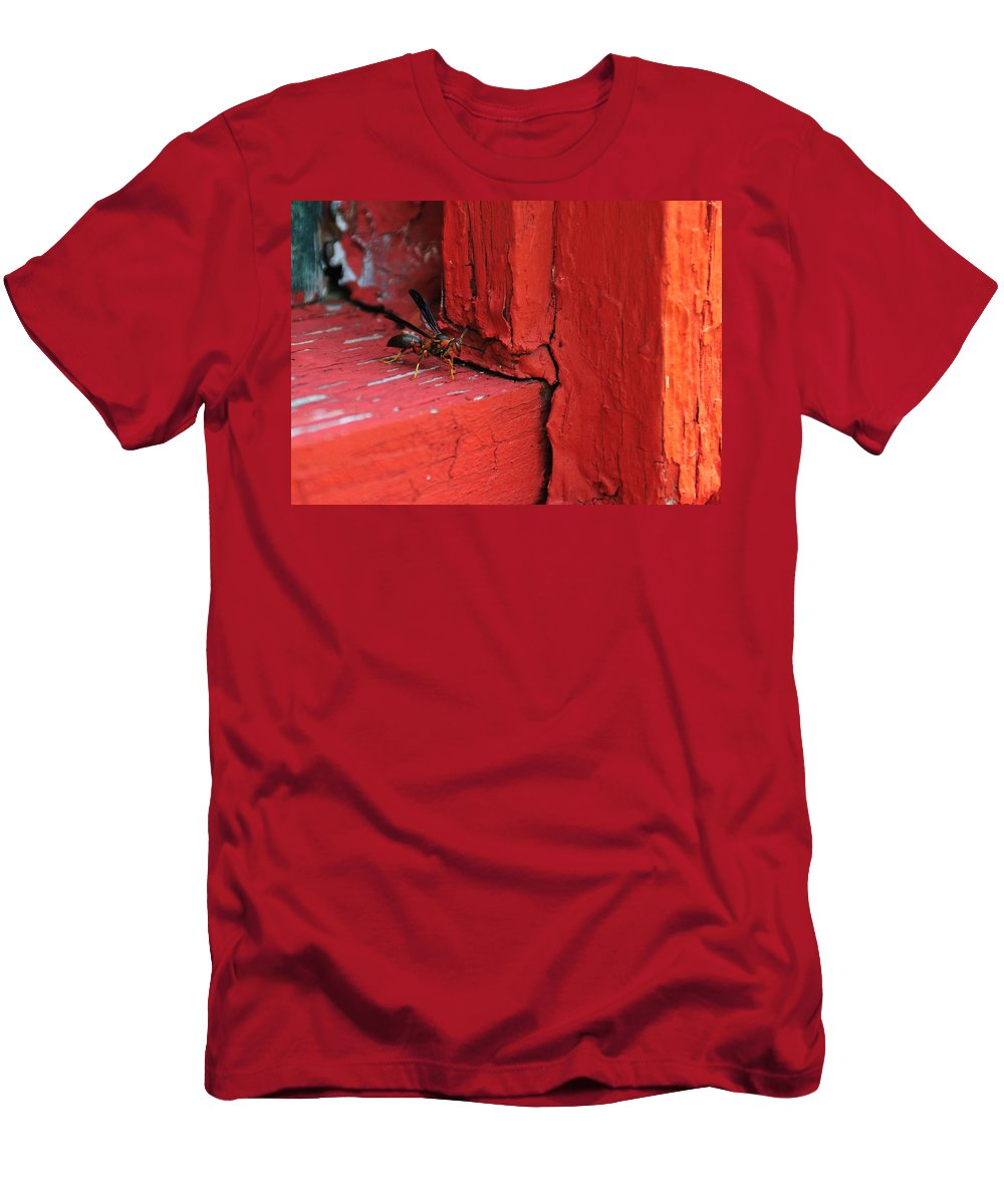 Wasp Men's T-Shirt (Athletic Fit) featuring the photograph Wasp And Red by David Arment