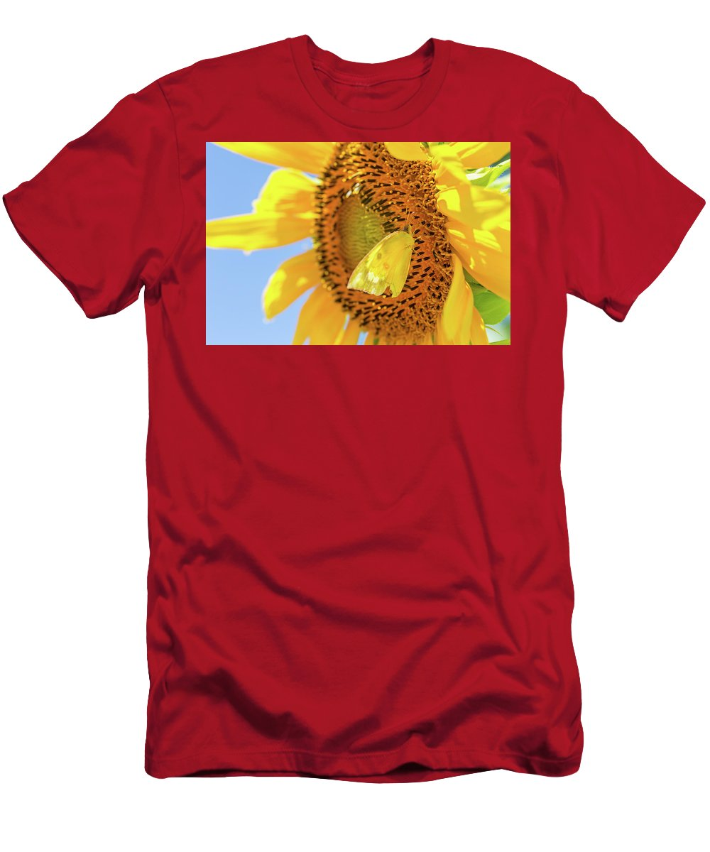 Art Men's T-Shirt (Athletic Fit) featuring the photograph Yellow Butterfly And Sunflower by SR Green