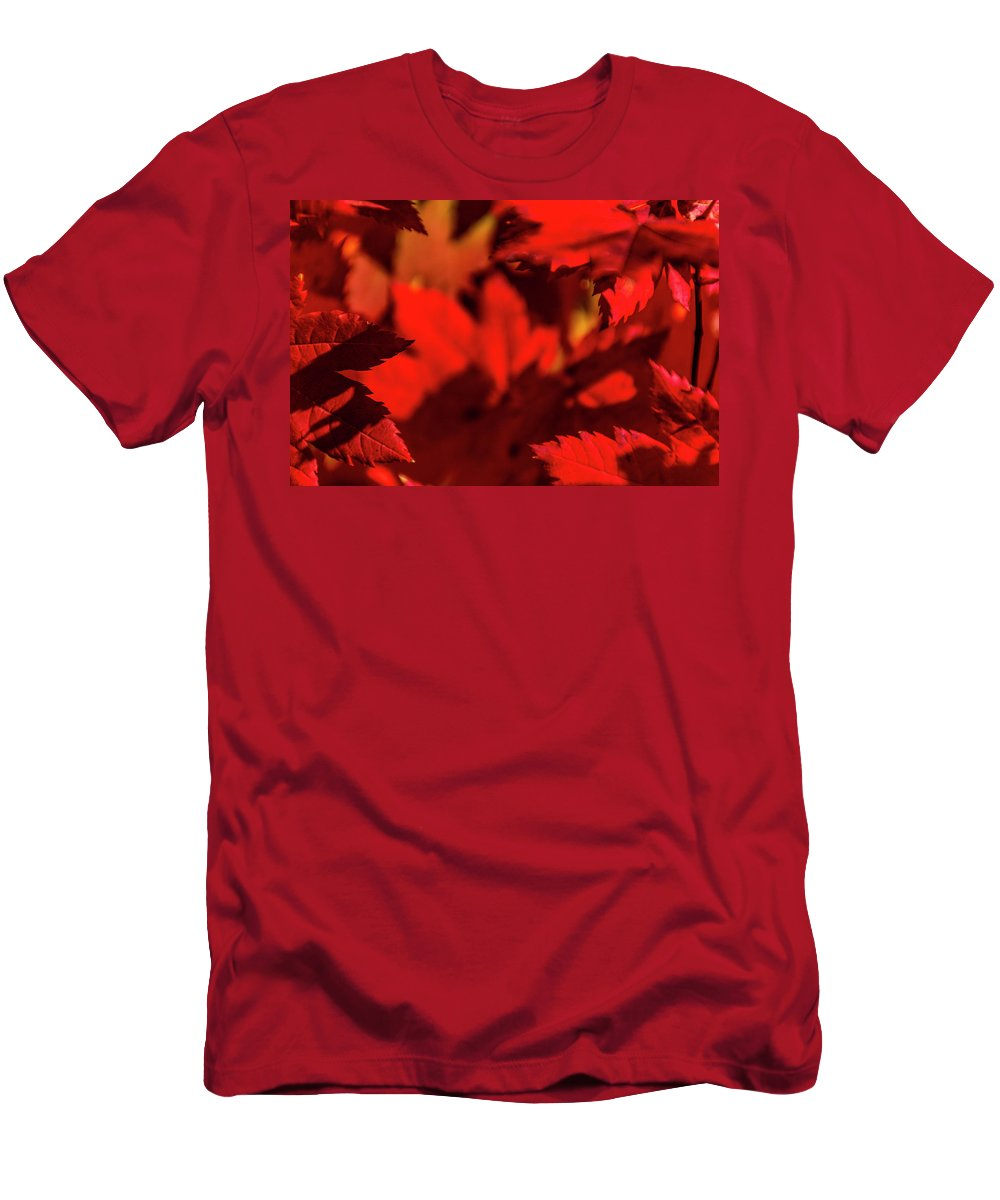 Fall Men's T-Shirt (Athletic Fit) featuring the photograph Fall Coffee Mug by Joel Buhs