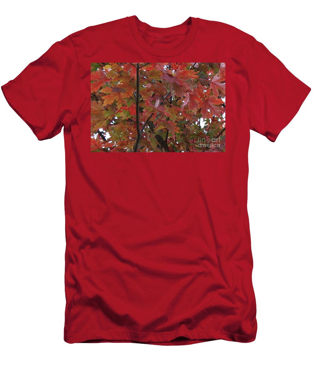 Red Leaves Men's T-Shirt (Athletic Fit) featuring the photograph Fall Collage by Leslie Gatson-Mudd