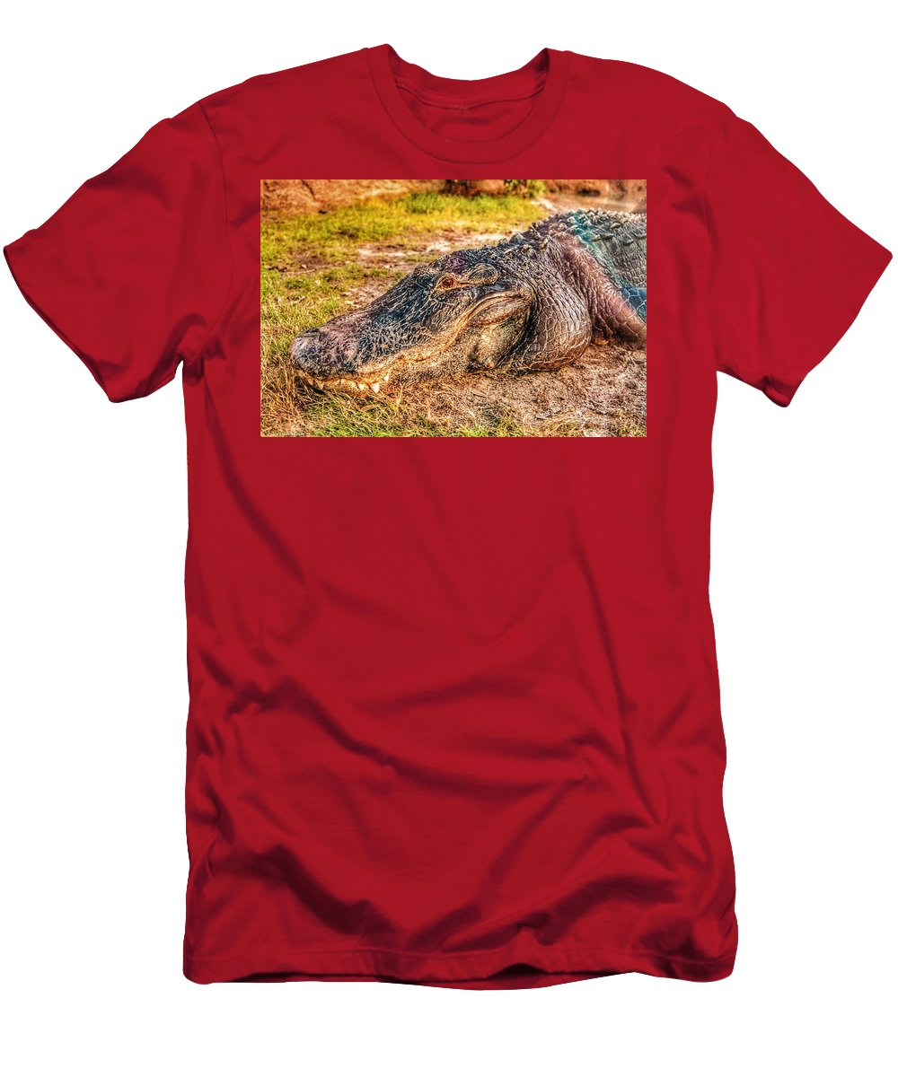 Florida Men's T-Shirt (Athletic Fit) featuring the photograph Florida Gator 1 by Tommy Anderson