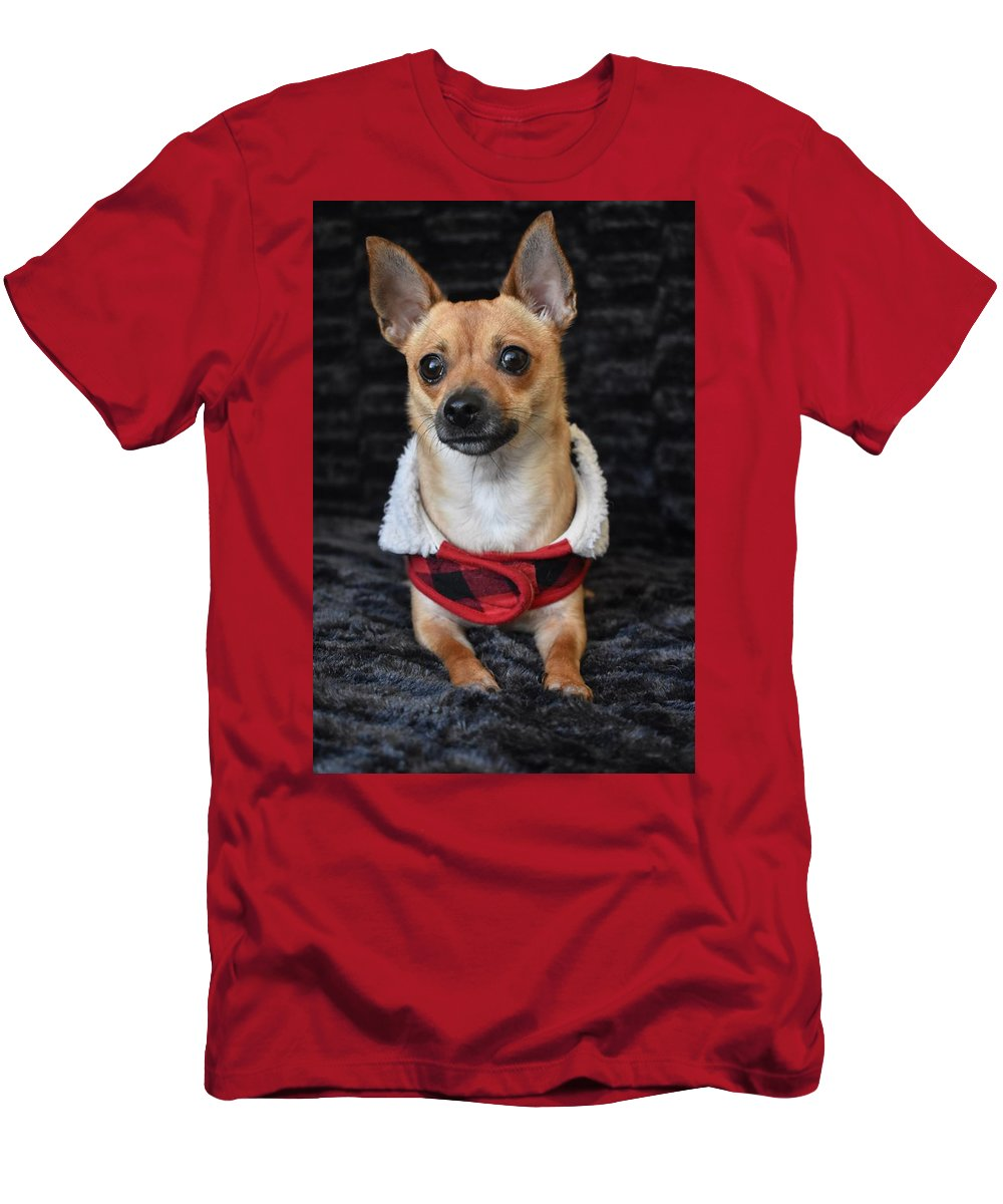 Chihuahua T-Shirt featuring the digital art Miracle by Cassidy Marshall