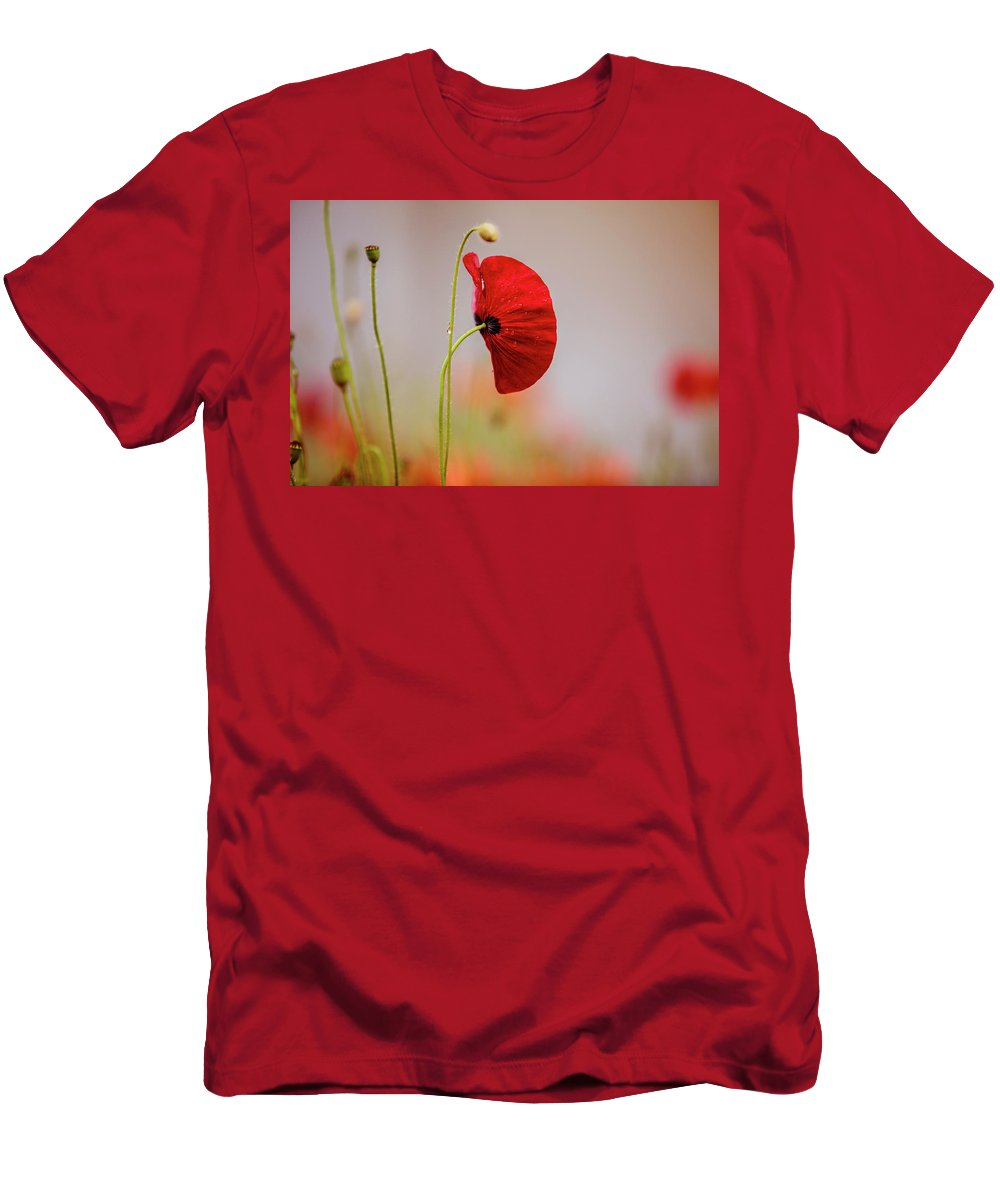 Poppy Men's T-Shirt (Athletic Fit) featuring the photograph Red Corn Poppy Flowers by Nailia Schwarz