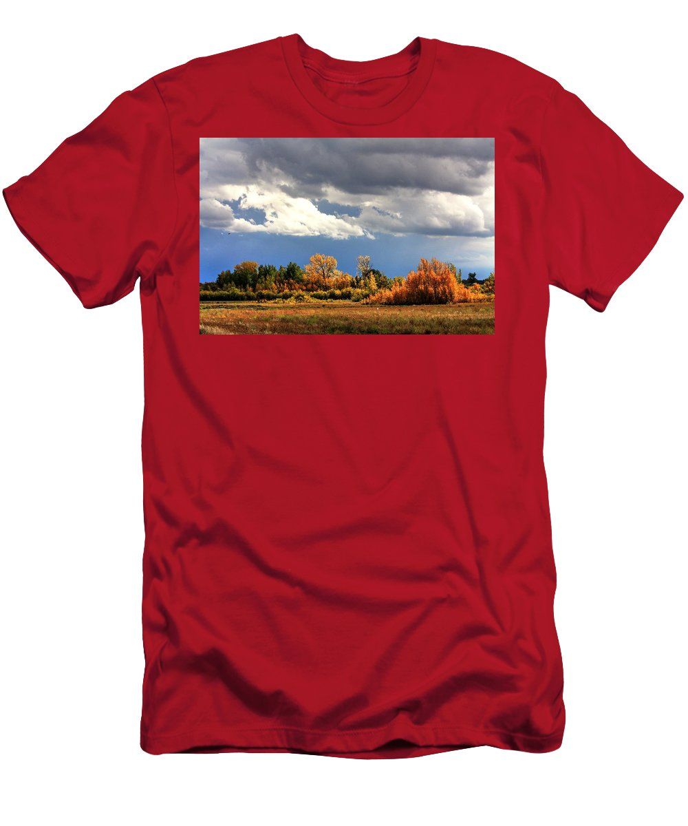 Autumn Fall Colours Colors Winter Red Yellow Red Orange Blue Harvest Evening The End Over This Before Winter Awakening Fall Colours Fall Color Summers End Men's T-Shirt (Athletic Fit) featuring the photograph Spot Light by David Matthews