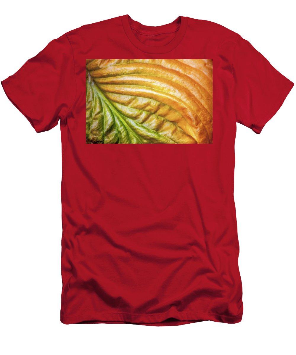 Hosta T-Shirt featuring the photograph Hosta Leaf Fall by Trevor Slauenwhite