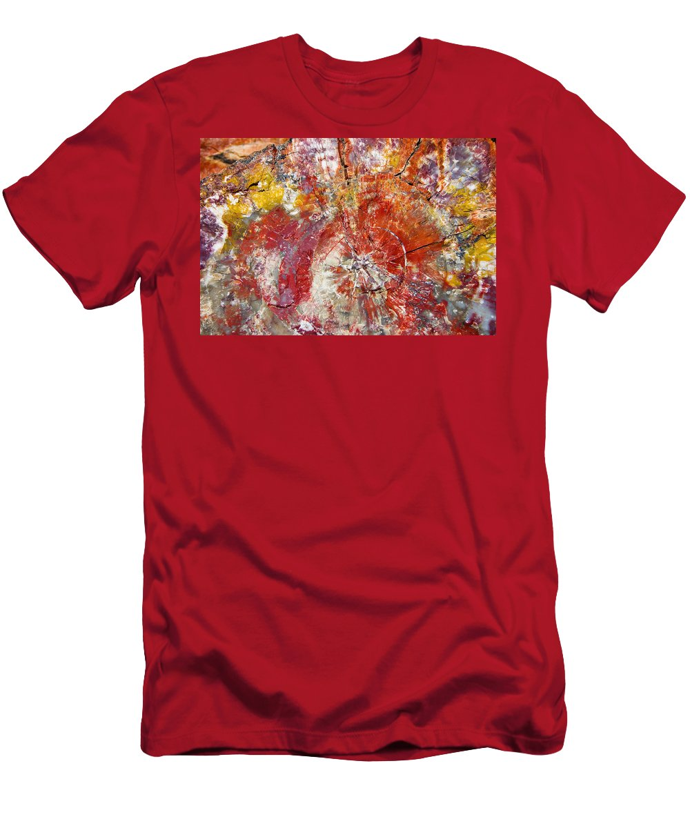 Petrified Wood Stone Texture Abstract Color Skip Hunt T-Shirt featuring the photograph Painted Desert Wood 1 by Skip Hunt