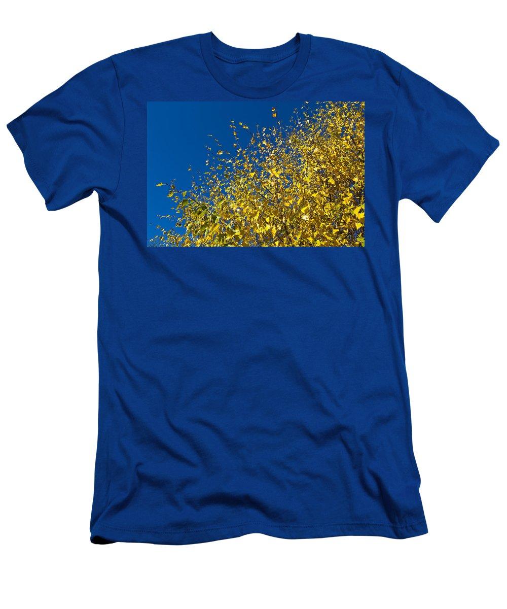 Autumn Men's T-Shirt (Athletic Fit) featuring the photograph Autumn Blue Sky by David Pyatt