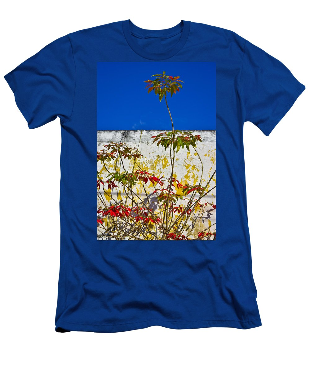 Diva Men's T-Shirt (Athletic Fit) featuring the photograph Diva by Skip Hunt